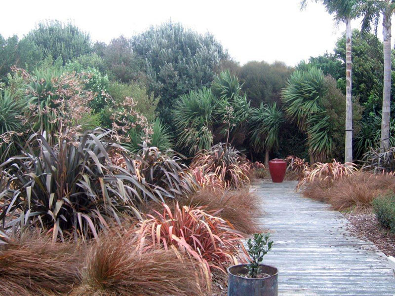 Landscape garden tauranga for Native garden designs nz
