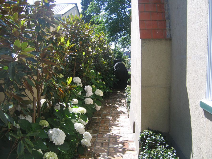 Garden Design Narrow Space garden design: garden design with indoor plants for narrow spaces