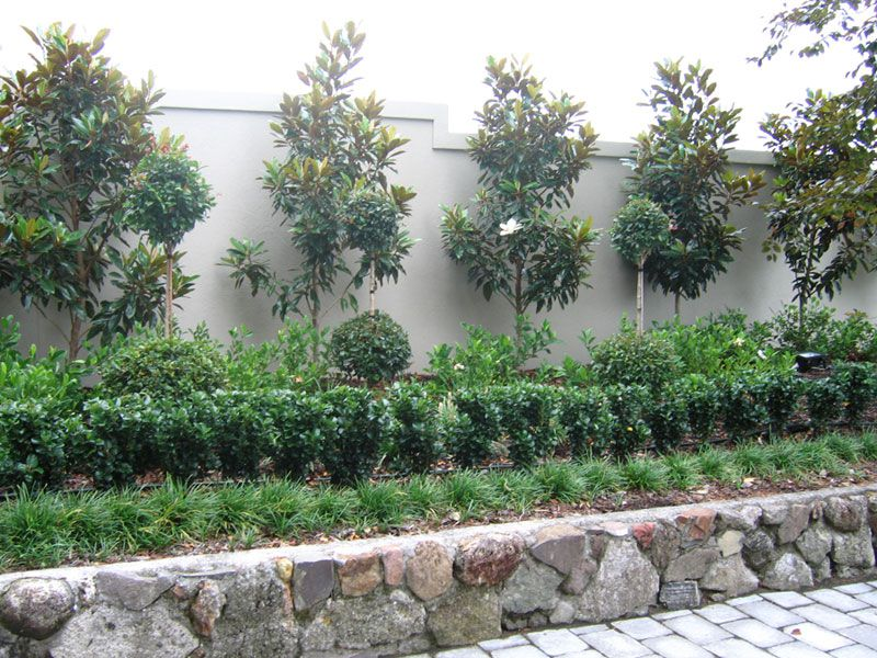Earth canvas landscaping tauranga rural residential for New zealand garden designs ideas